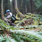 Descubriendo trails in Squamish
